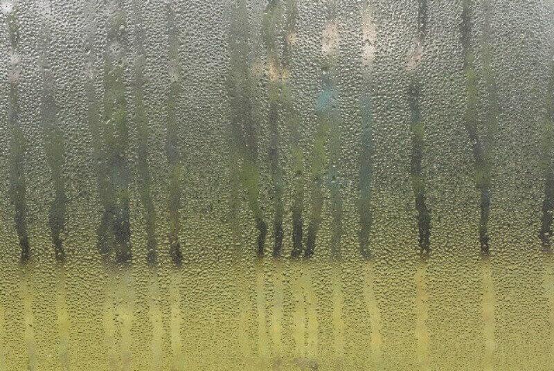 condensacion-en-ventanas