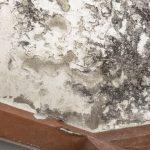 techo tratamientos antihumedad
