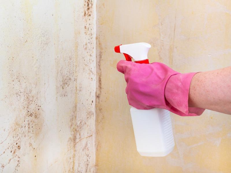 problemas-de-humedades-spray
