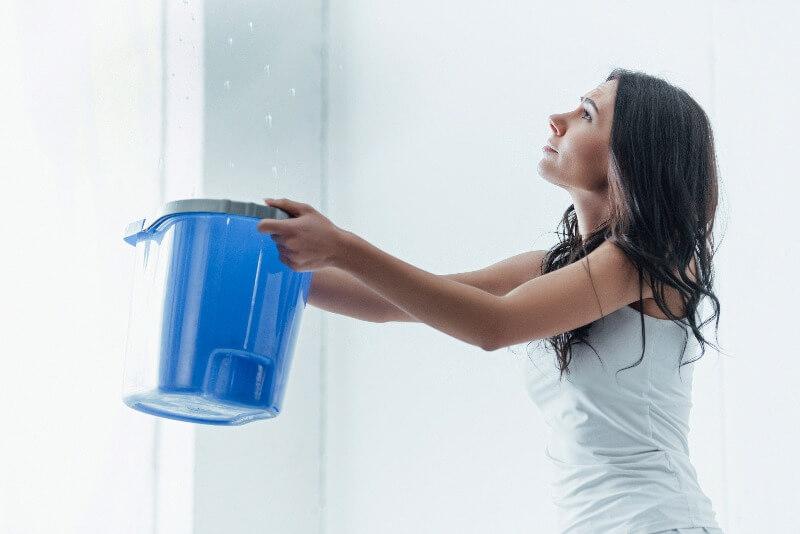 los especialistas en filtraciones de agua