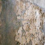 tratamiento de paredes con humedad
