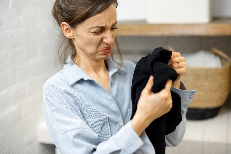 como eliminar el olor a humedad