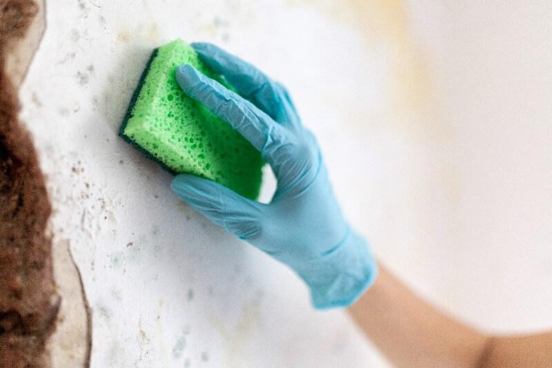 problemas de humedad en muros