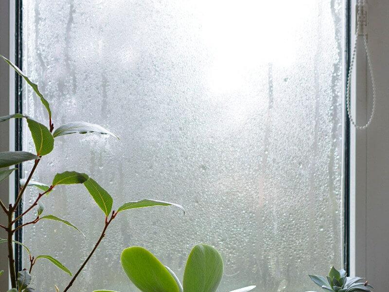 tratamiento de humedad por condensación