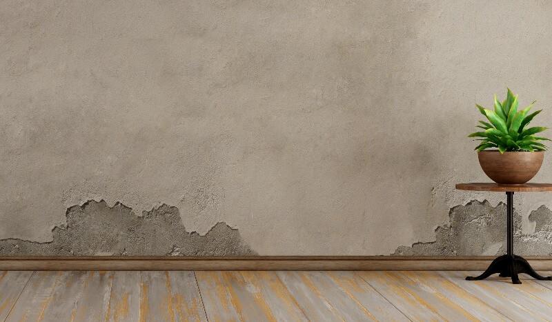 humedades en paredes consecuencias