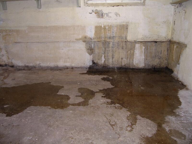 filtracion de agua en murosa