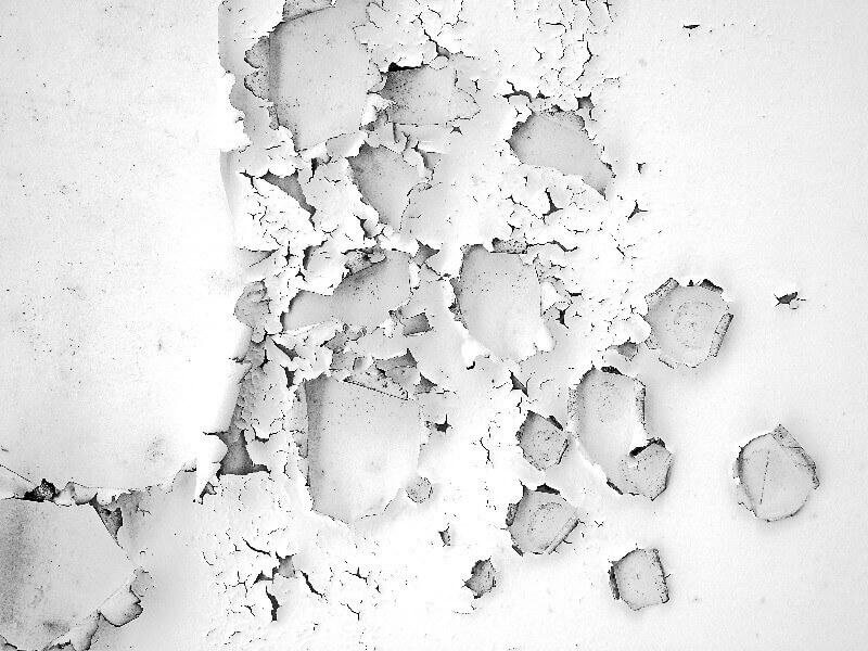 moho en las paredes de la habitacion