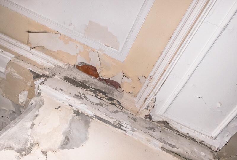 reparar una pared con humedad por filtracion