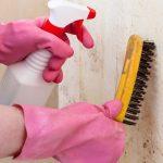 como quitar la humedad de la pared