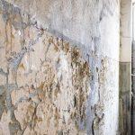 tratamiento antihumedad en paredes interiores